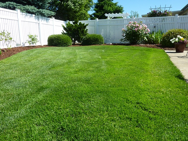 what is cultivated turf