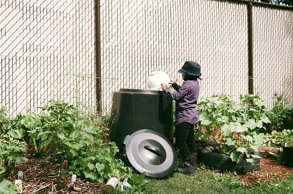 moss compost