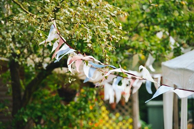 how to protect your garden from wind