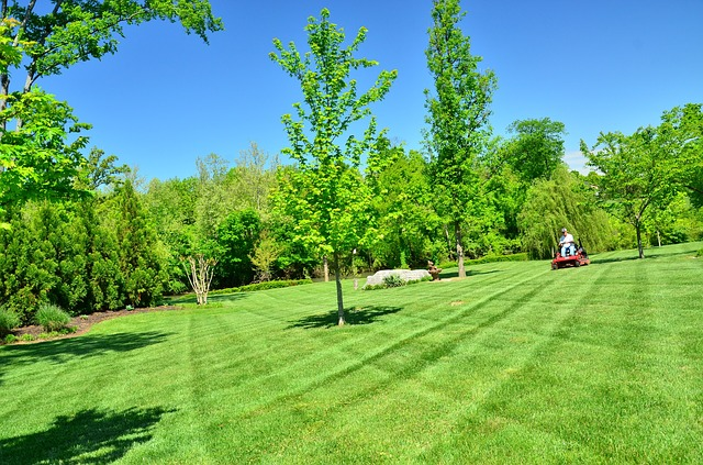 plan lawn care schedule 2021