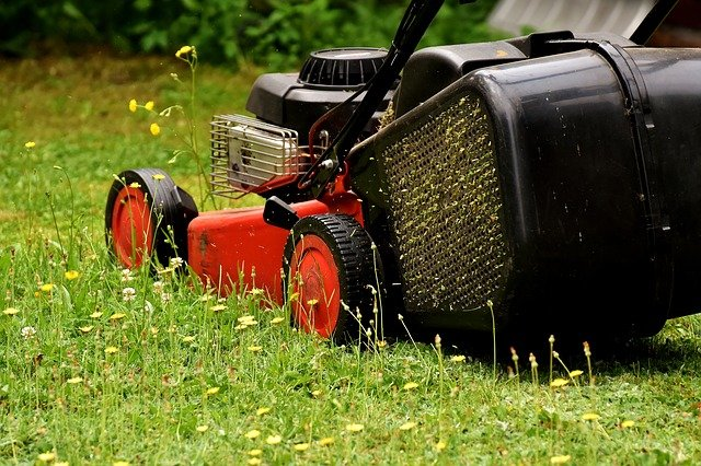 spring lawn care list