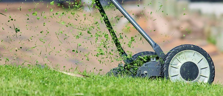 lawnmower, lawn care mistakes