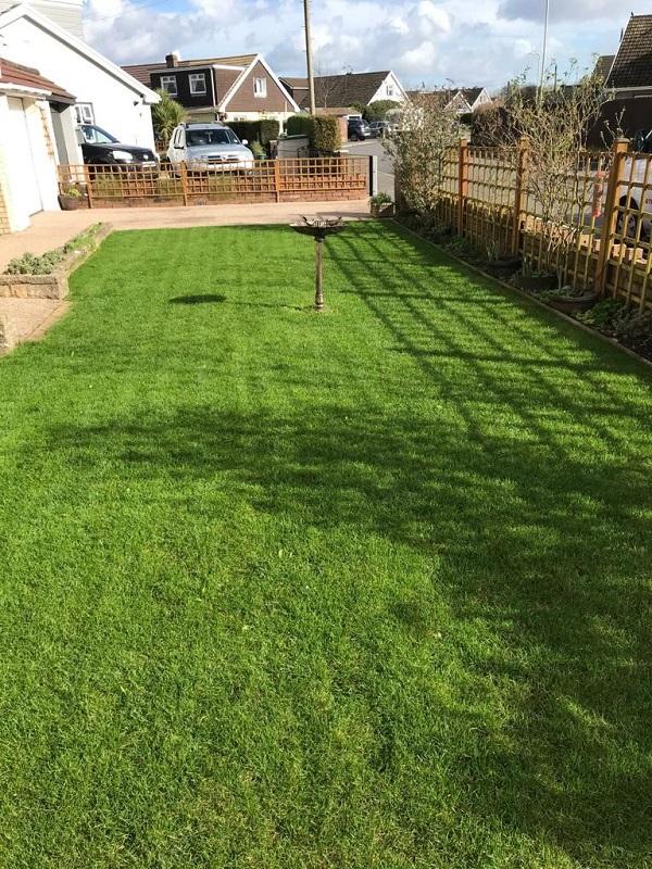 lawn treatment in pecoed