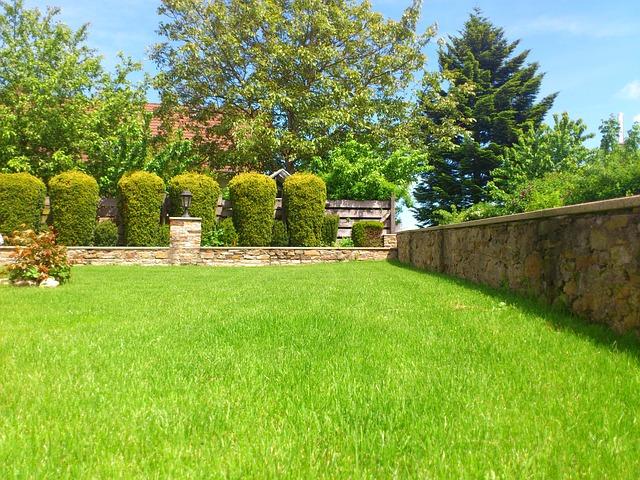 Grassy lawn in back garden