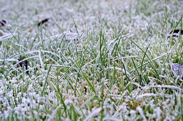water lawn in winter