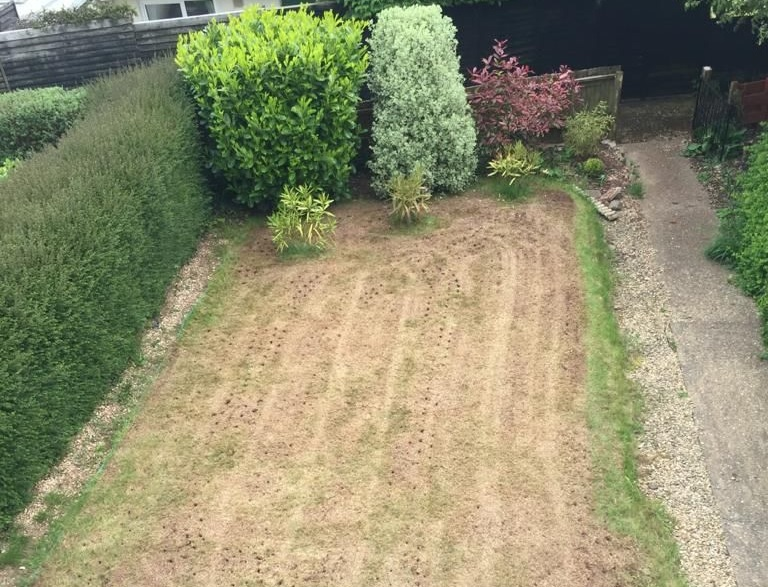 A recently scarified lawn