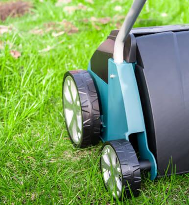 Scarify your lawn
