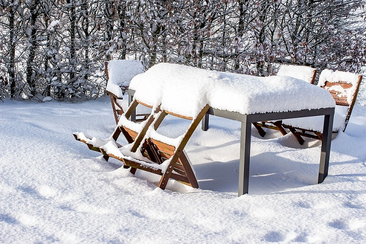 protect your garden in winter