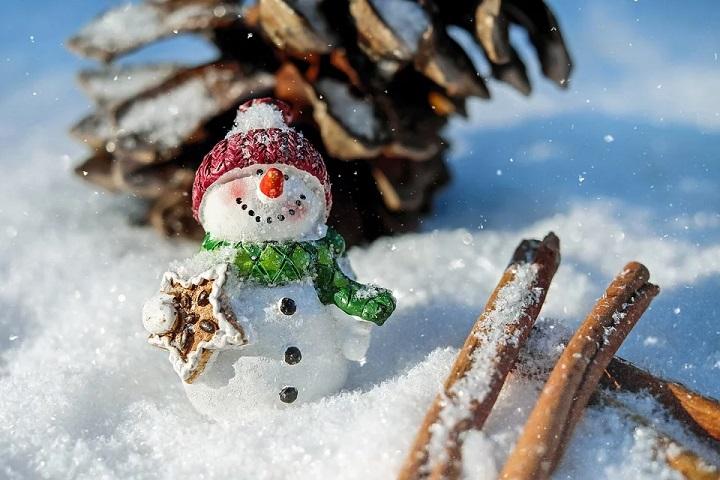 snowman, lawn frost